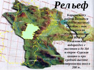 Рельеф Барышскому району достался наиболее высокий участок – так называемая «