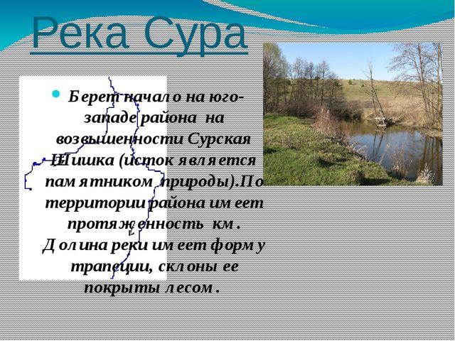 Река Сура Берет начало на юго-западе района на возвышенности Сурская Шишка (и...