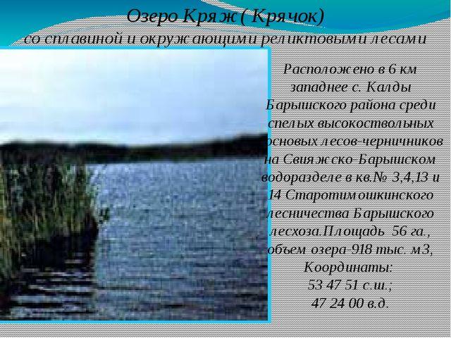 Озеро Кряж( Крячок) со сплавиной и окружающими реликтовыми лесами Расположено...