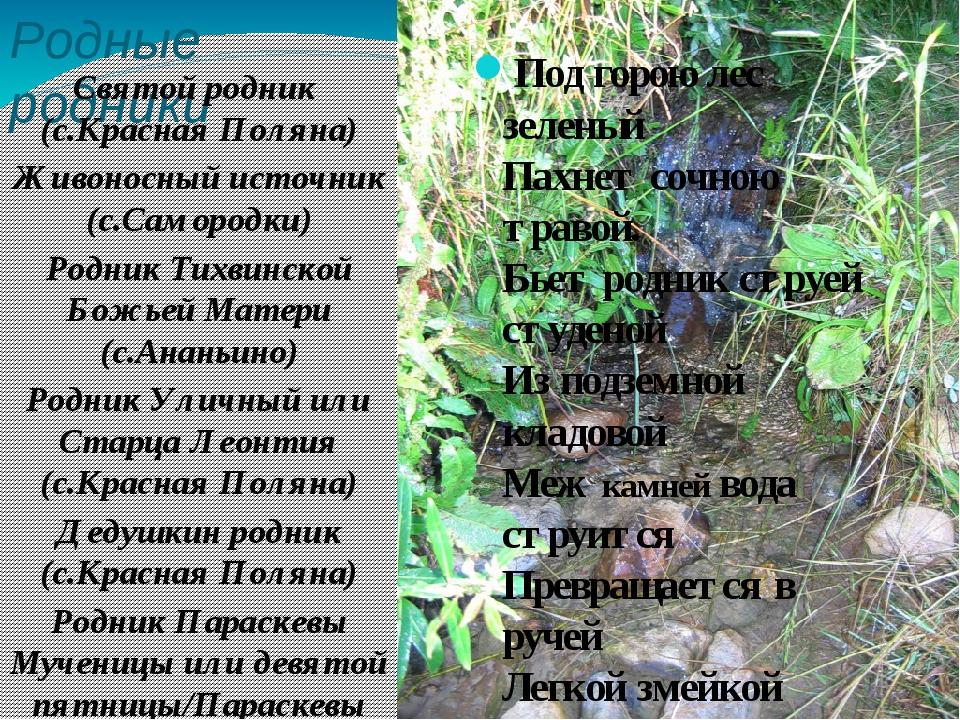 Родные родники Святой родник (с.Красная Поляна) Живоносный источник (с.Саморо...