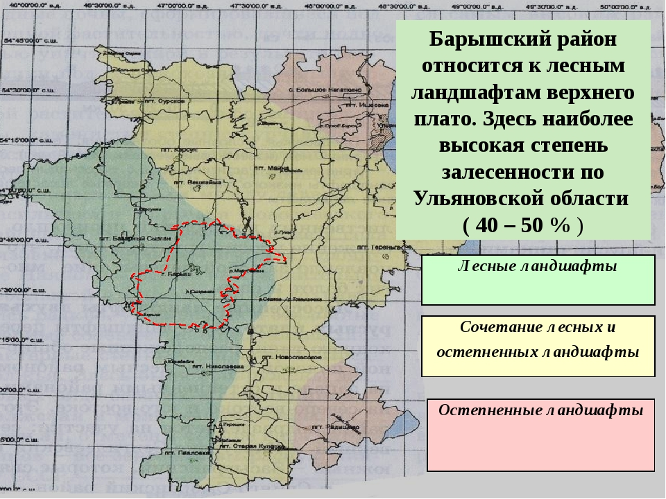Барышский район относится к лесным ландшафтам верхнего плато. Здесь наиболее...