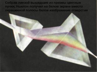 Собрав линзой вышедшие из призмы цветные пучки, Ньютон получил на белом экран