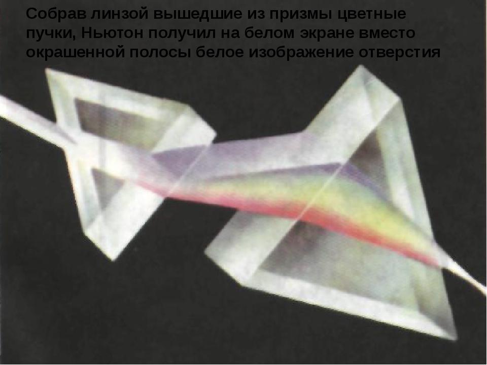 Собрав линзой вышедшие из призмы цветные пучки, Ньютон получил на белом экран...