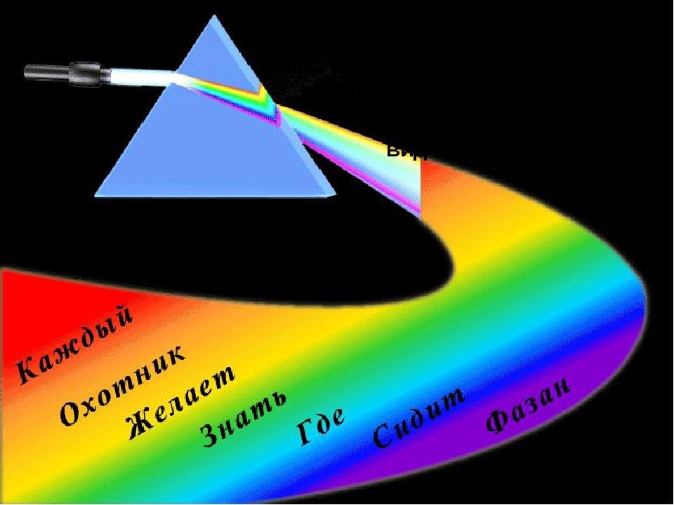 Радужную полоску Ньютон назвал спектром. spectrum (лат.) - видение.
