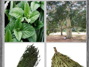 В Русской парной можно использовать травы с различными ароматами и запарками,
