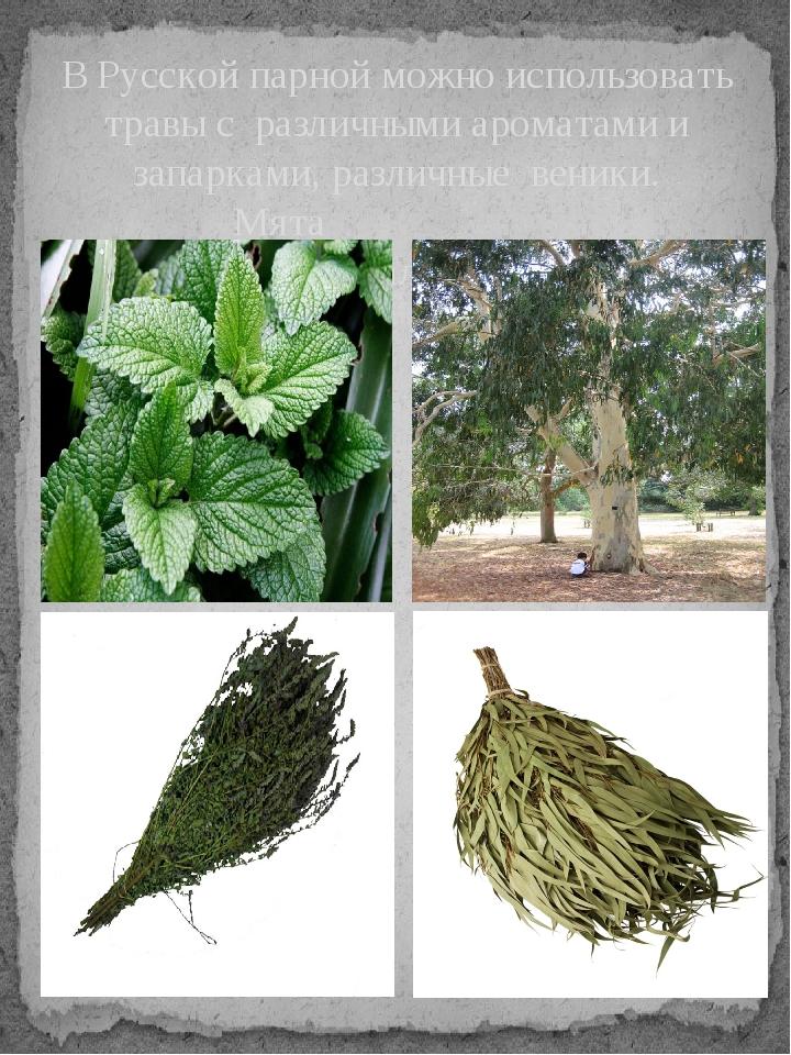 В Русской парной можно использовать травы с различными ароматами и запарками,...