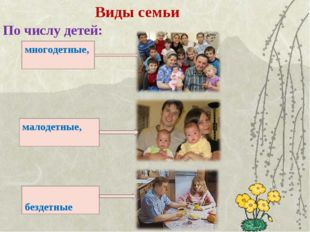 Виды семьи По числу детей: многодетные, малодетные, бездетные