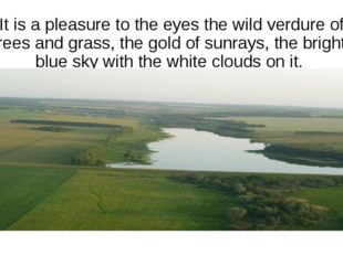 It is a pleasure to the eyes the wild verdure of trees and grass, the gold of