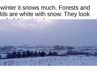 In winter it snows much. Forests and fields are white with snow. They look wo