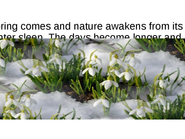 Spring comes and nature awakens from its winter sleep. The days become longe...