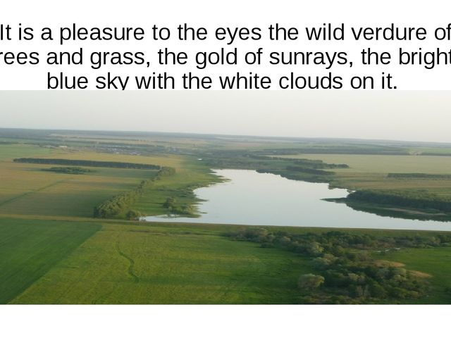 It is a pleasure to the eyes the wild verdure of trees and grass, the gold of...