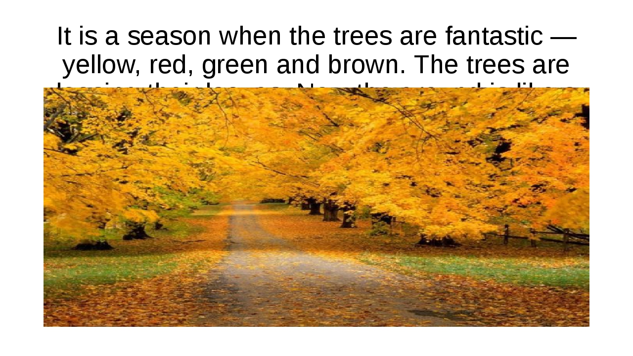 It is a season when the trees are fantastic — yellow, red, green and brown. T...