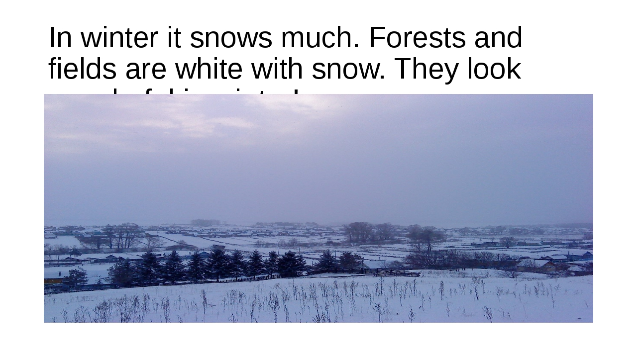 In winter it snows much. Forests and fields are white with snow. They look wo...