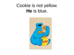 Cookie is not yellow. He is blue.