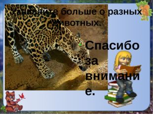 . Узнавайте больше о разных животных. Спасибо за внимание.