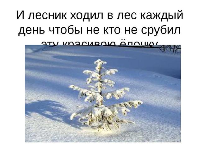 И лесник ходил в лес каждый день чтобы не кто не срубил эту красивою ёлочку