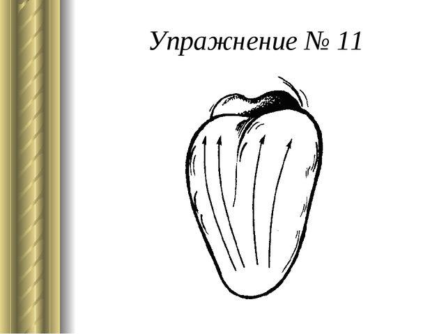 Упражнение № 11