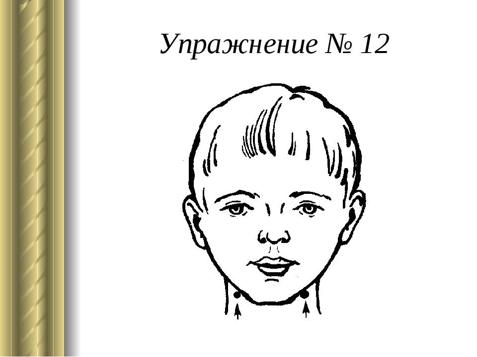 Упражнение № 12