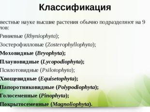 Классификация Известные науке высшие растения обычно подразделяют на 9 отдело