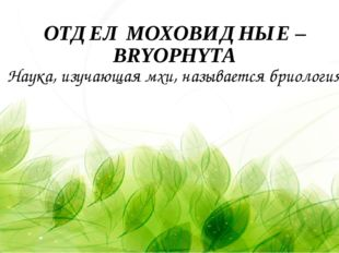 ОТДЕЛ МОХОВИДНЫЕ – BRYOPHYTA Наука, изучающая мхи, называется бриология.