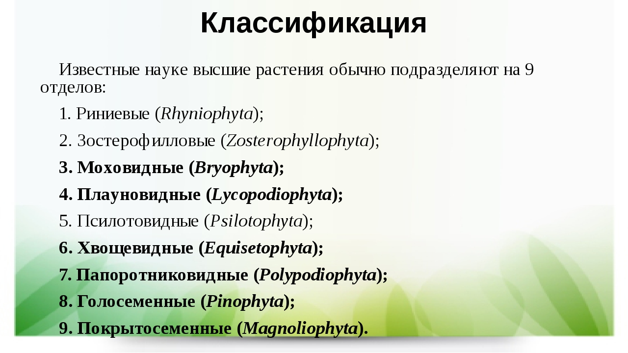 Классификация Известные науке высшие растения обычно подразделяют на 9 отдело...