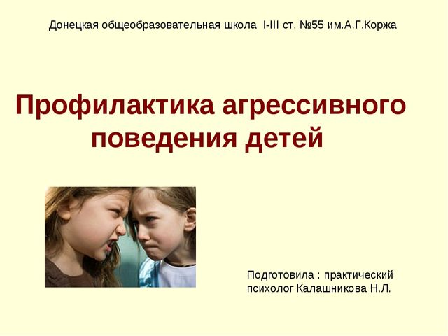 Профилактика агрессивного поведения детей Донецкая общеобразовательная школа...