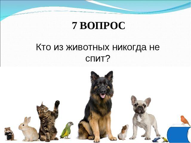 7 ВОПРОС Кто из животных никогда не спит?