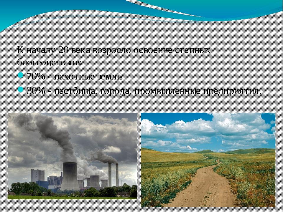 К началу 20 века возросло освоение степных биогеоценозов: 70% - пахотные зем...