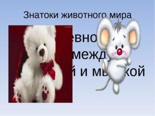 Знатоки животного мира Соревнования между мишкой и мышкой