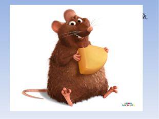 Мышь - уменьшительное мышка. Небольшой грызун с острой мордочкой, усиками и