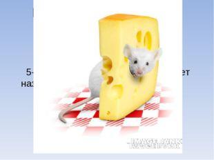 Кто раньше появился на земле? мишка: мышка: 5-6 млн лет назад. 7млн ле