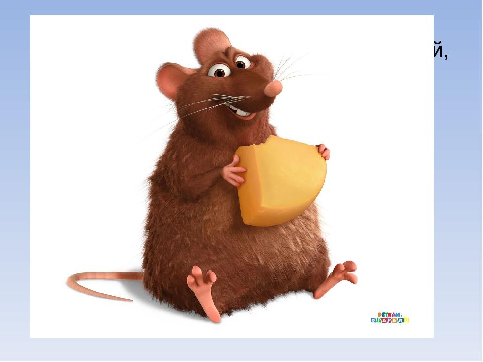 Мышь - уменьшительное мышка. Небольшой грызун с острой мордочкой, усиками и...