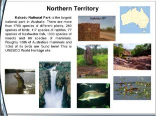 Northern Territory Jim Jim Falls Termitary Barramundi Kakadu NP Kakadu Natio