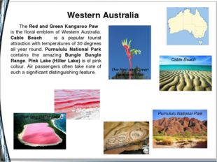 Western Australia Cable Beach Purnululu National Park The Red and Green Kang