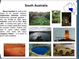 South Australia Great Southern Railway Umpherston Sinkhole Common Brushtail