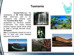 Tasmania Wineglass Bay Russell Falls Tasmania gum eucalyptus The Lair Lodge