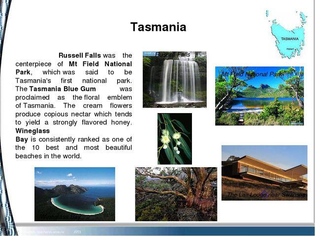 Tasmania Wineglass Bay Russell Falls Tasmania gum eucalyptus The Lair Lodge...