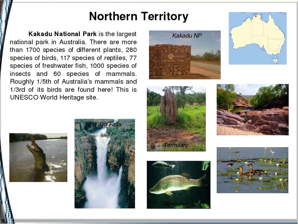 Northern Territory Jim Jim Falls Termitary Barramundi Kakadu NP Kakadu Natio...