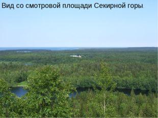 Вид со смотровой площади Секирной горы.