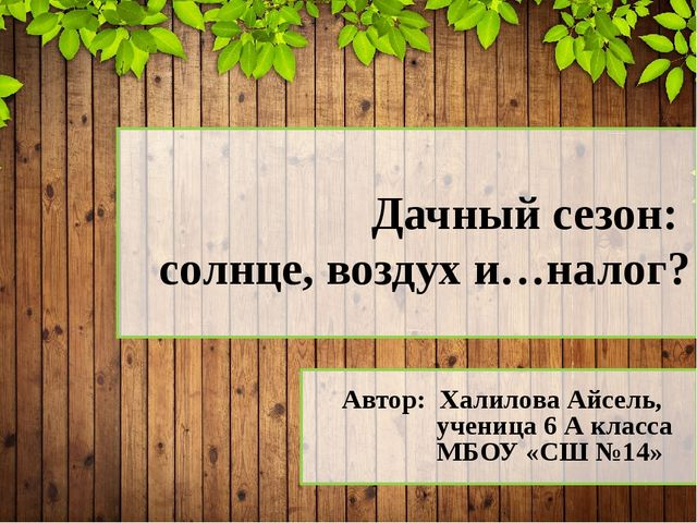 Автор: Халилова Айсель, ученица 6 А класса МБОУ «СШ №14» Дачный сезон: солнц...