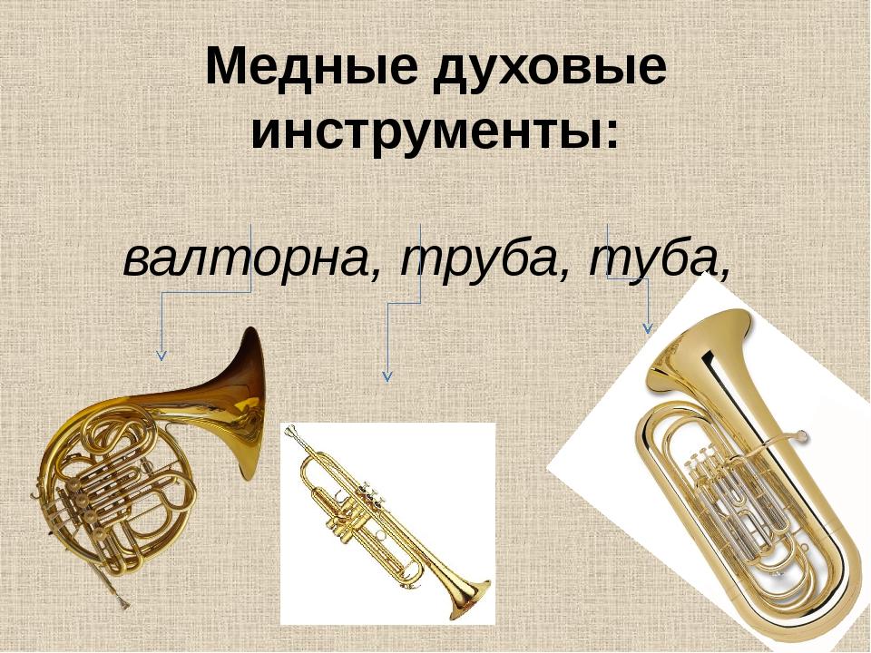 Медные духовые инструменты: валторна, труба, туба,