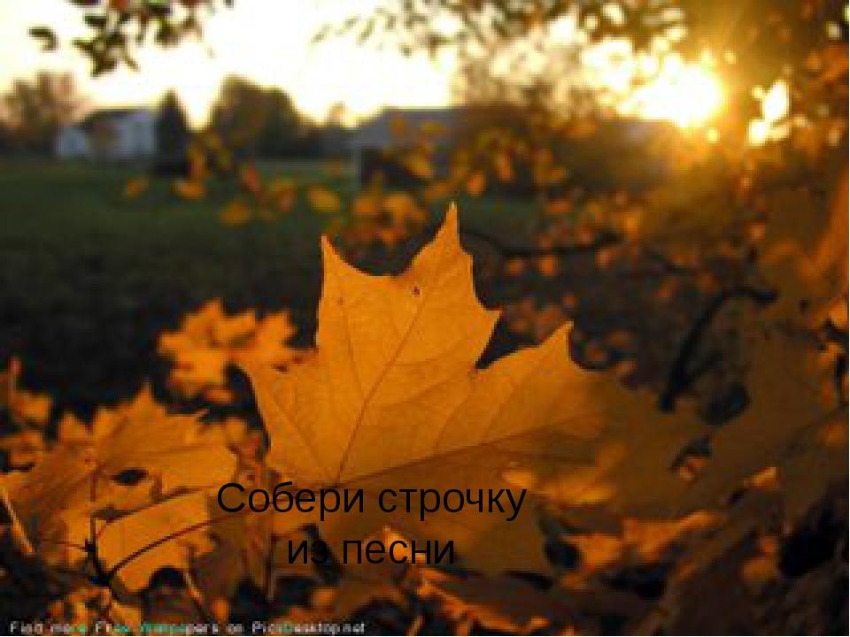 «ОСЕНЬ» Что такое осень? Это небо Плачущее небо под ногами В лужах разлетаютс...