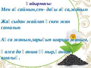 Қайырмасы: Мен аңсаймын,сен- дағы аңса,жаным Жақсыдан жайлап өскен жан самал