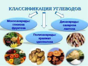 КЛАССИФИКАЦИЯ УГЛЕВОДОВ Моносахариды: глюкоза фруктоза Полисахариды: крахмал