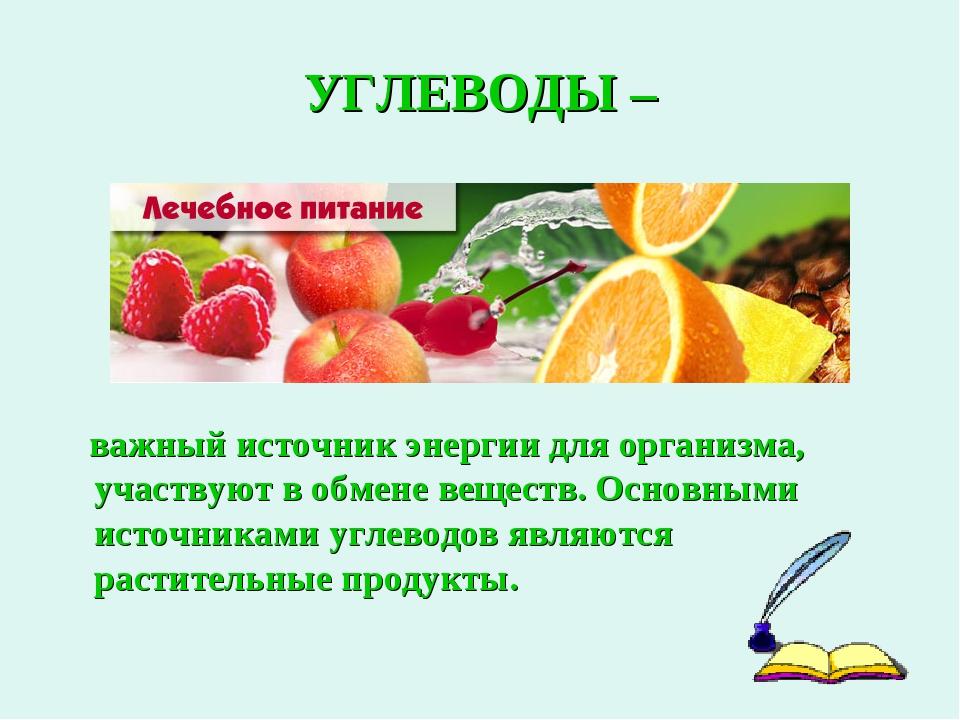 УГЛЕВОДЫ – важный источник энергии для организма, участвуют в обмене веществ...