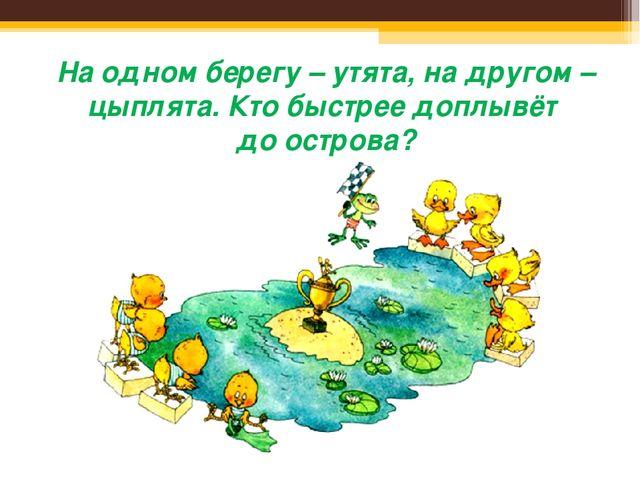 На одном берегу – утята, на другом – цыплята. Кто быстрее доплывёт до острова?