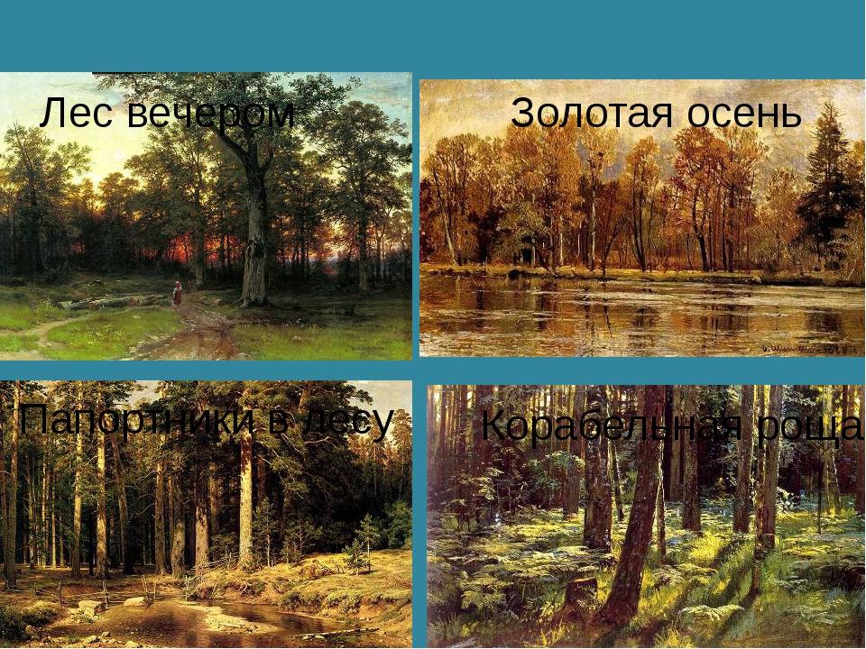 Лес вечером Золотая осень Папортники в лесу Корабельная роща