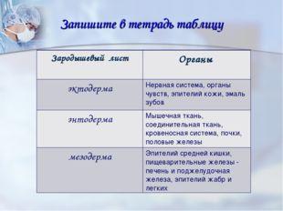 Запишите в тетрадь таблицу Зародышевый лист Органы эктодермаНервная система