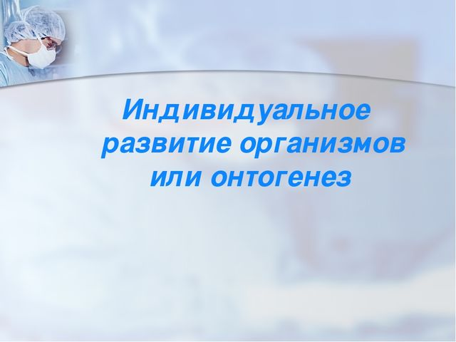 Индивидуальное развитие организмов или онтогенез