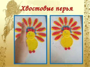 Хвостовые перья